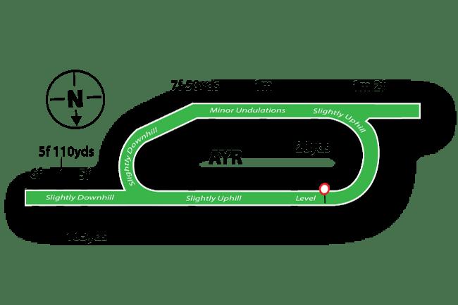 Ayr Racecourse Tips