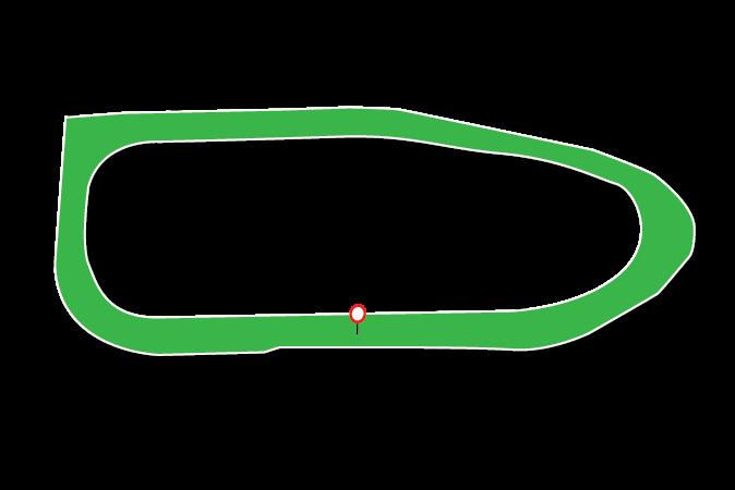 Ballinrobe Racecourse Tips