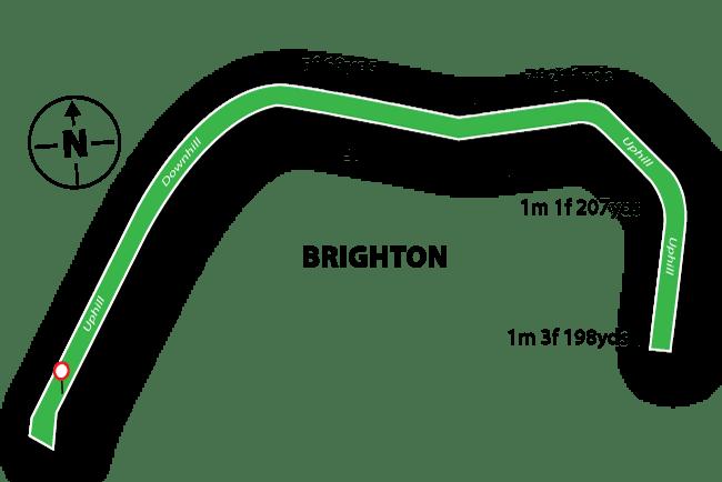Brighton Racecourse Tips