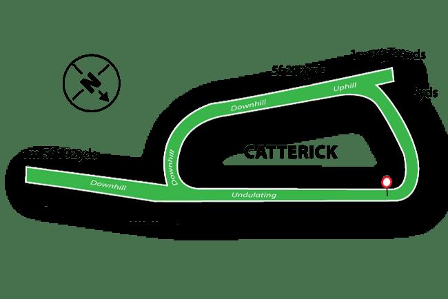 Catterick Racecourse Tips