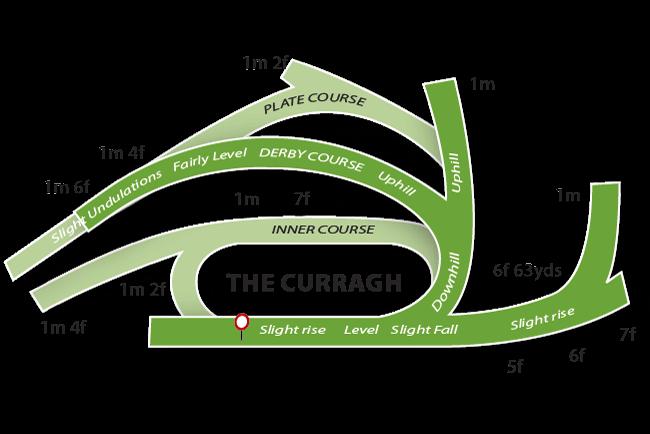 Curragh Racecourse Tips