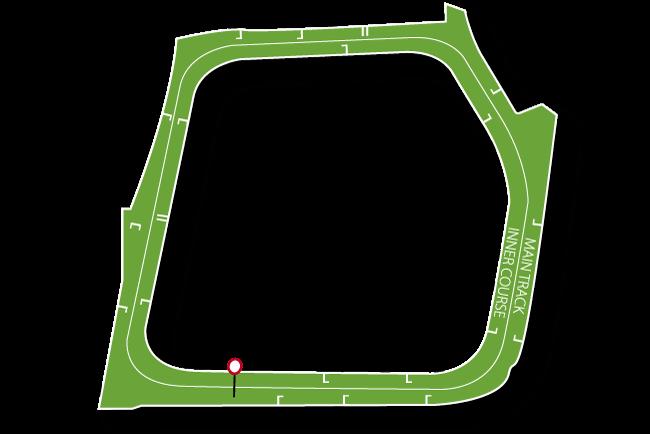 Fairyhouse Racecourse Tips