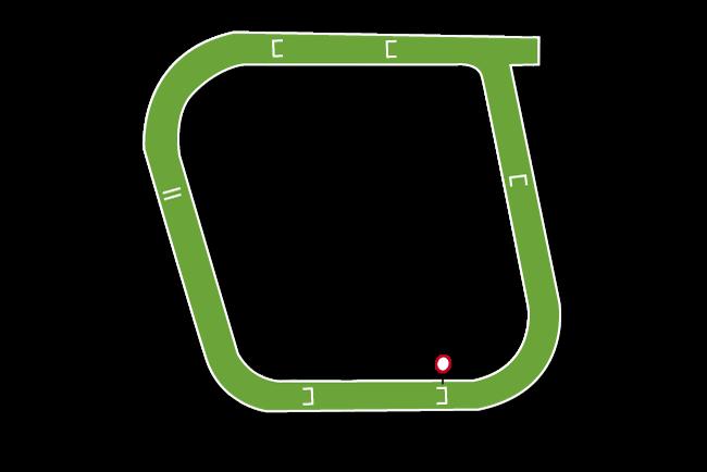 Fakenham Racecourse Tips