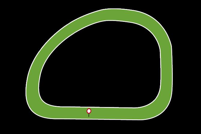 Galway Racecourse Tips