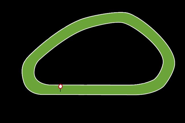 Gowran Racecourse Tips