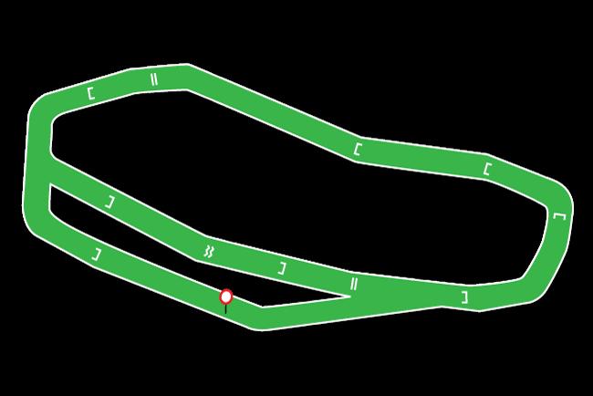 Hexham Racecourse Tips