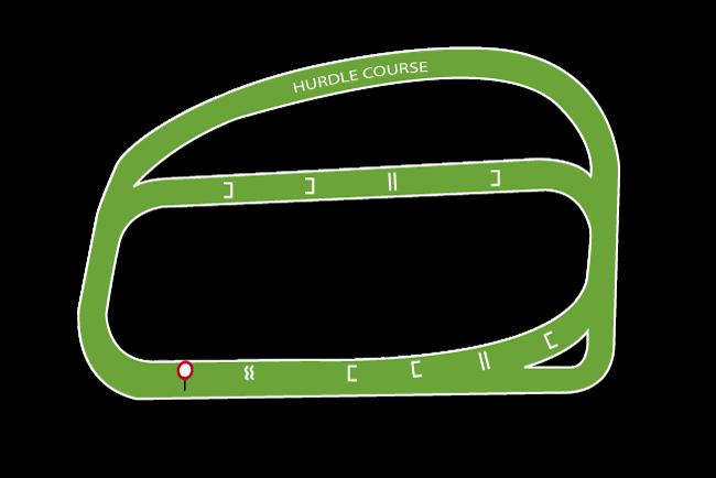 Ludlow Racecourse Tips