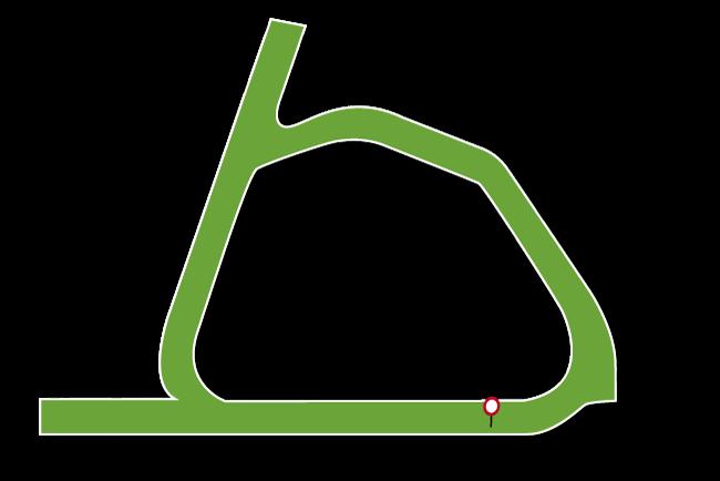 Naas Racecourse Tips