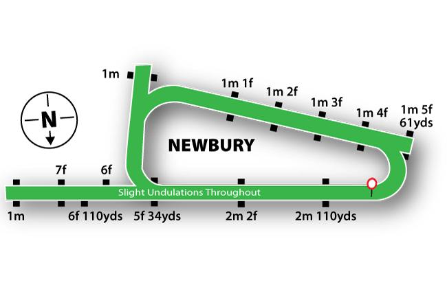 Newbury Racecourse Tips
