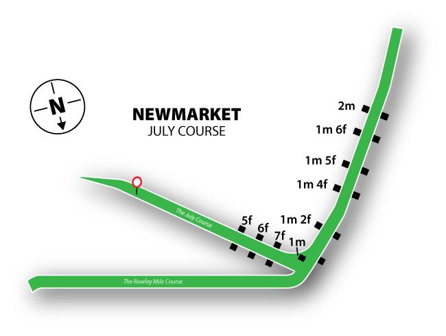 Newmarket Racecourse Tips