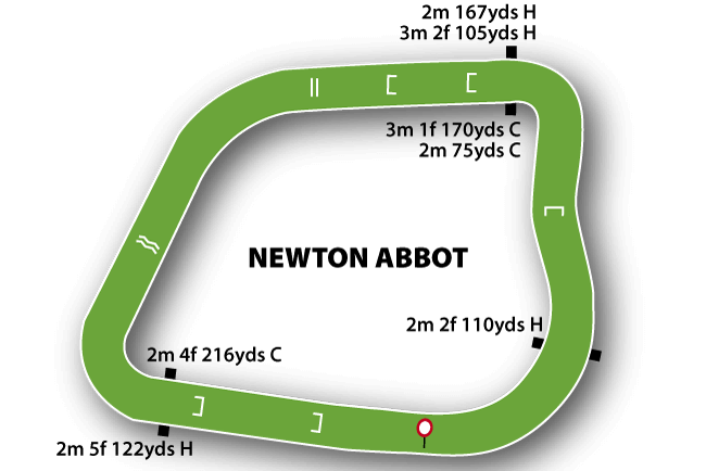 Newton Abbot Racecourse Tips
