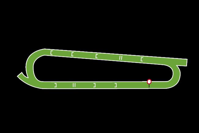 Worcester Racecourse Tips